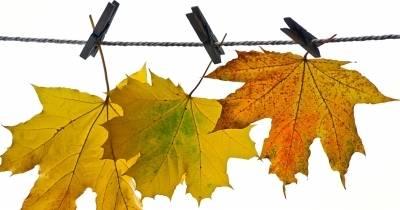 Pobyt jesienny
